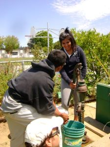 Food What crew members drain the greywater system